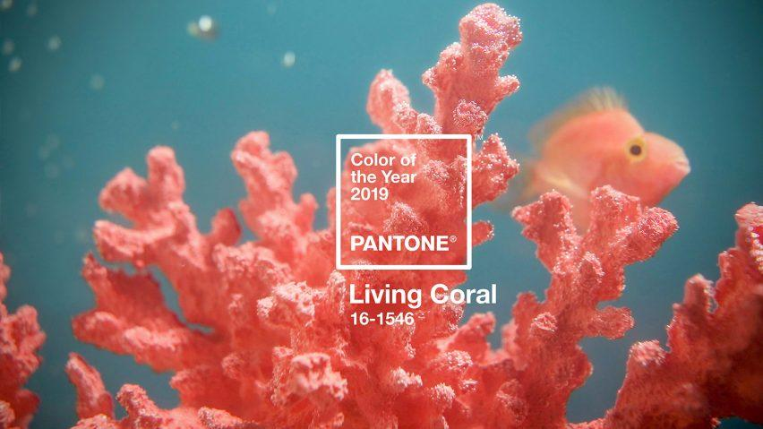 Hope House: Incorporating Pantone's Colour of the Year 'Living Coral'.
